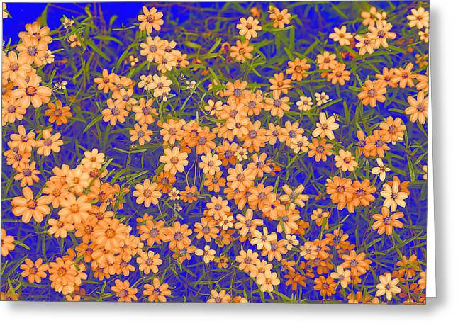 Peach Floral On Blue Greeting Card