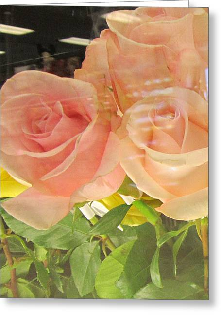 Peach Roses In Greeting Card Greeting Card