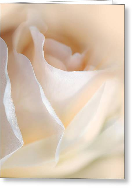 Peaches And Cream Rose Flower Greeting Card by Jennie Marie Schell