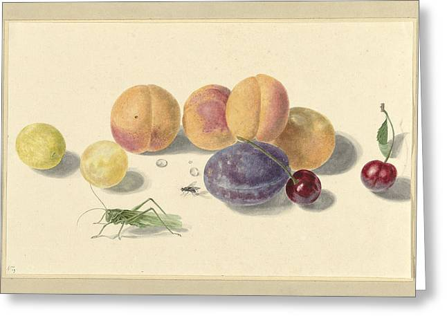 Peaches, Plums, Cherries And Two Insects Greeting Card by Quint Lox