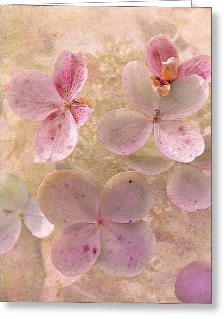 Peachy Pink Floral Greeting Card