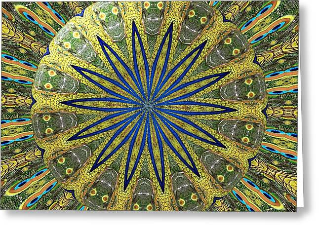 Peacock Feathers Kaleidoscope Under Glass  1 Greeting Card