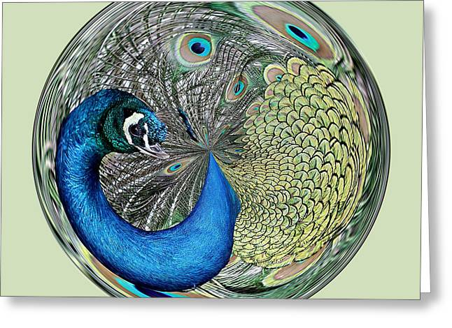 Peacock Orb Greeting Card by Paulette Thomas
