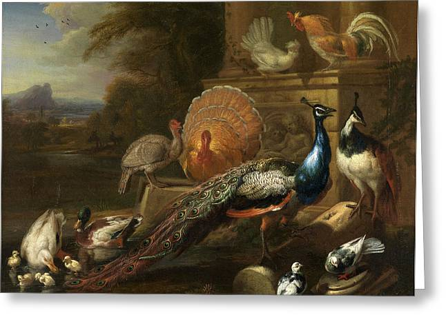 Peacocks, Doves, Turkeys, Chickens And Ducks By A Classical Greeting Card