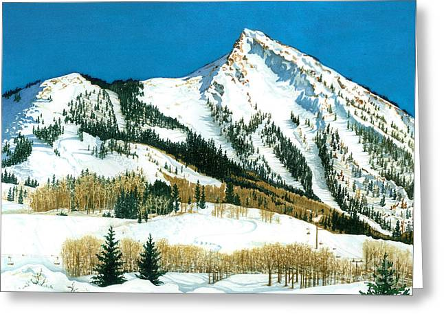 Peak Adventure Greeting Card by Barbara Jewell