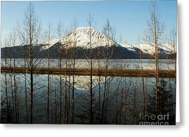 Peak Reflections 1 Greeting Card by Mel Steinhauer