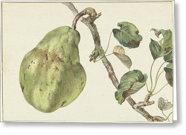 Pear On A Branch, Pieter Gevers Greeting Card by Quint Lox