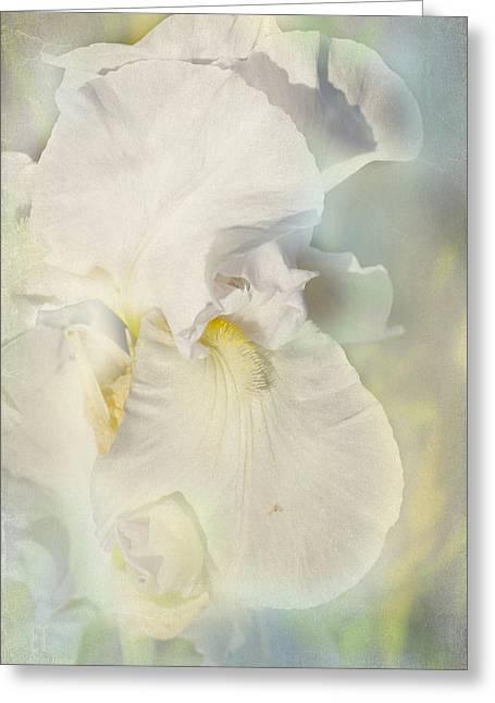 Pearl Greeting Card by Elaine Teague