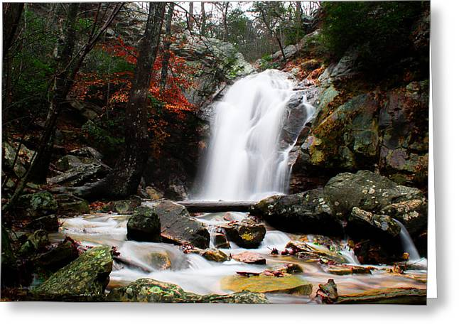 Peavine Falls In Autumn Greeting Card by Shelby  Young
