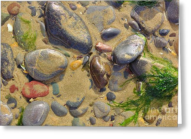 Pebbles On The Beach Greeting Card