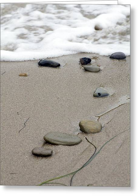 Pebbles On The Beach Greeting Card by Terry Thomas
