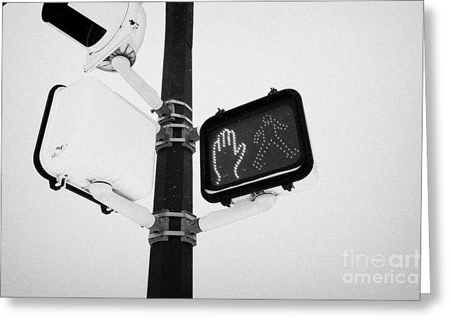 pedestrian crosswalk red stop signal in the snow Saskatoon Saskatchewan Canada Greeting Card