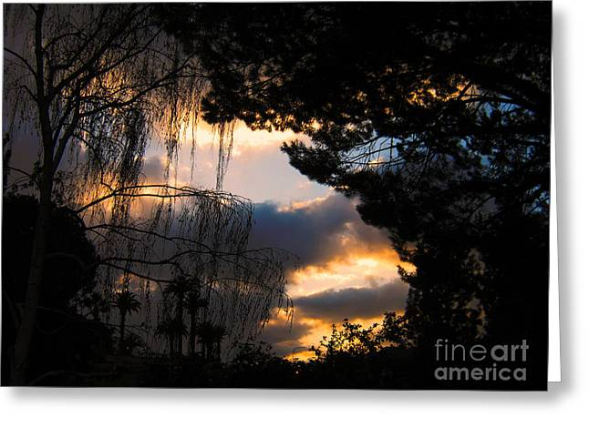 Greeting Card featuring the photograph Peek A Boo Sunset by Janice Westerberg