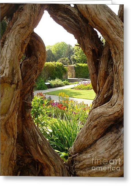 Greeting Card featuring the photograph Peek At The Garden by Vicki Spindler