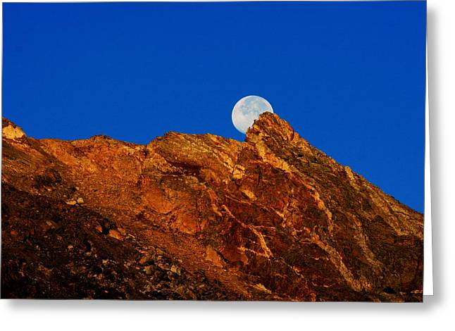 Peeking Full Moon Greeting Card by Rebecca Adams