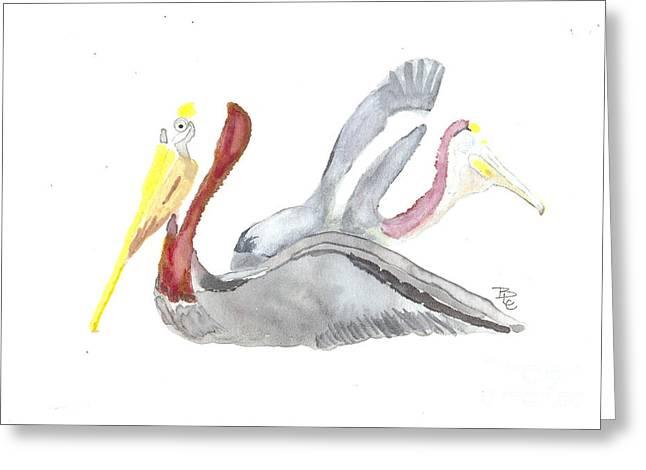 Pelican And Mate Greeting Card