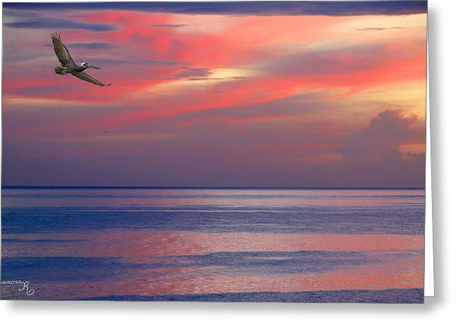 Pelican At Sunset Greeting Card by Mariarosa Rockefeller