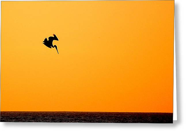 Pelican Diving At Sunset Greeting Card