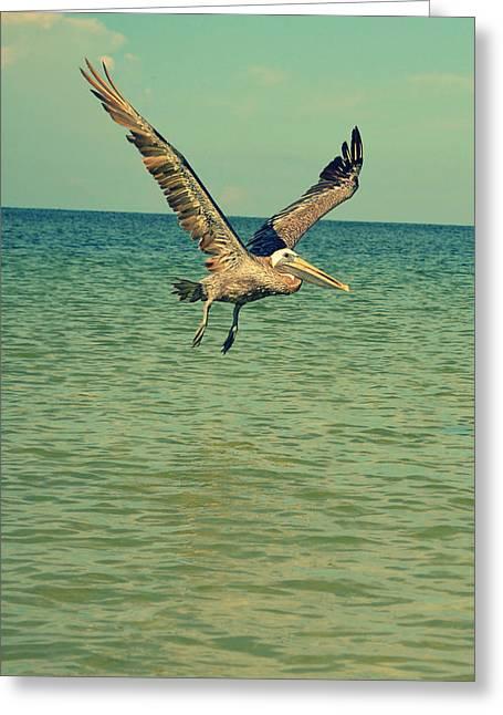 Pelican Gliding Greeting Card by Patricia Awapara