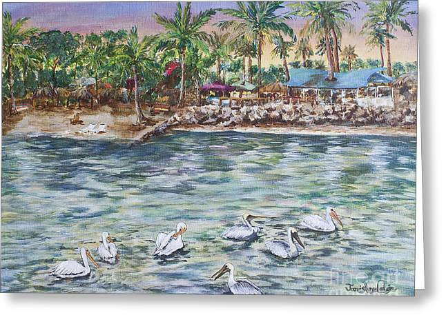 Pelican Medley Greeting Card