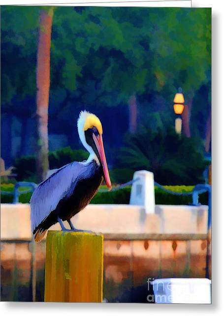Pelican On Post Artistic Greeting Card by Dan Friend