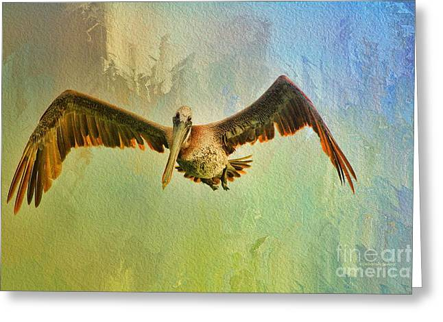 Pelican On Texture Greeting Card