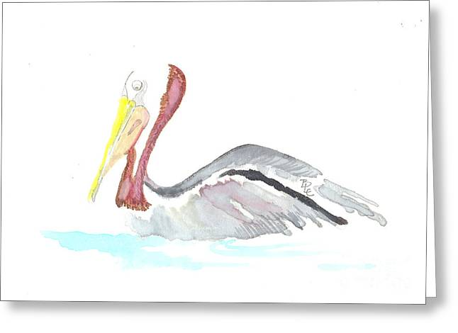 Pelican Out For A Swim Greeting Card