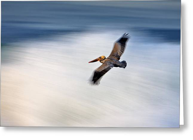 Pelican Over Wave  Mg_1212 Greeting Card