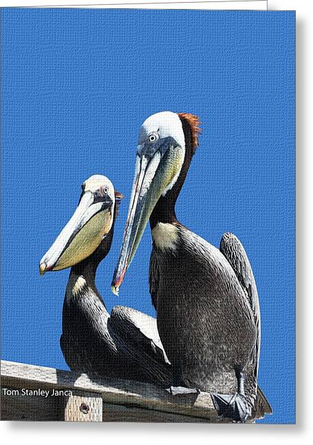 Greeting Card featuring the photograph Pelican Pair by Tom Janca
