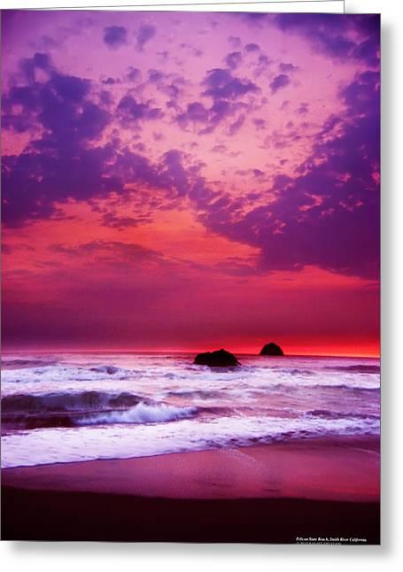 Pelican State Beach California 02 Greeting Card by Rafael Escalios