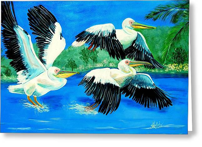 Pelican Trio Greeting Card by Kathern Welsh