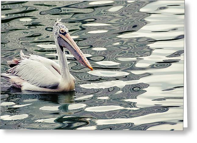 Pelican With Abstract Water Reflections I Greeting Card by Jenny Rainbow