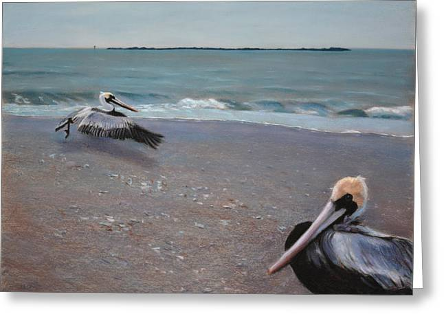 Pelicans Greeting Card by Christopher Reid