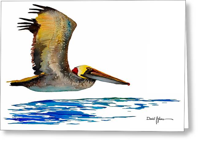Da137 Pelican Over Water By Daniel Adams Greeting Card