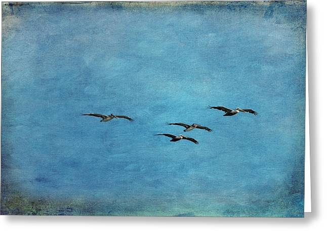Pelicans In Flight Greeting Card by Mary Jo Allen