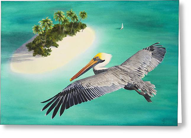 Pelicans Perspective Greeting Card