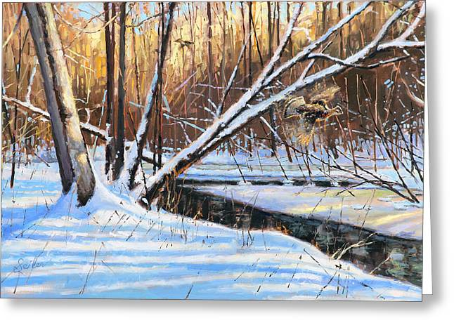 Peme Bon Won River Fly By Greeting Card by Larry Seiler