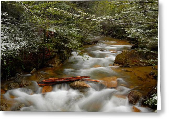 Pemigewasset River In Franconia Notch Greeting Card