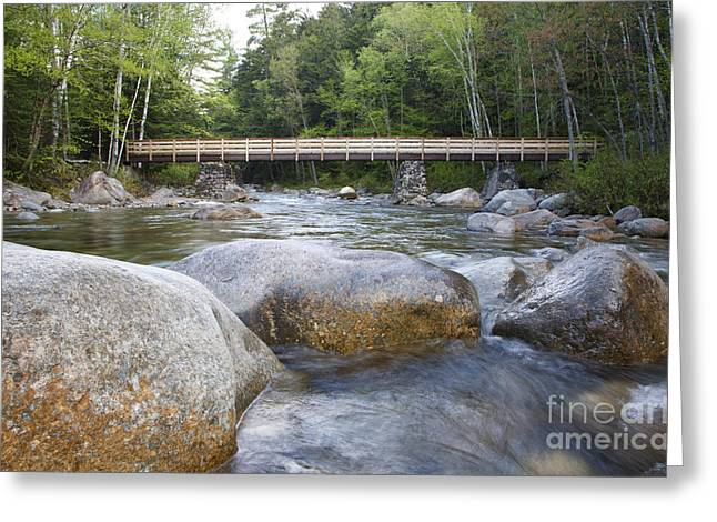 Pemigewasset Wilderness - White Mountains New Hampshire Greeting Card by Erin Paul Donovan