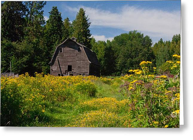 Pend Oreille Barn Greeting Card
