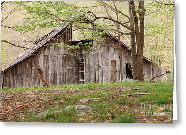 Pendleton County Barn Greeting Card