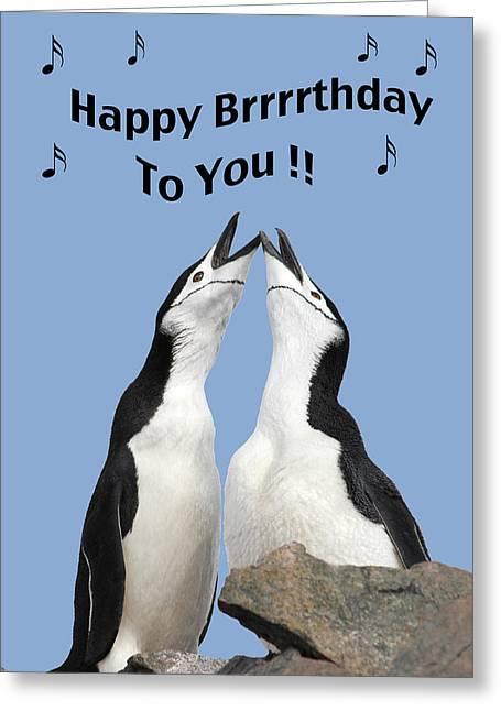 Penguin Birthday Card Greeting Card