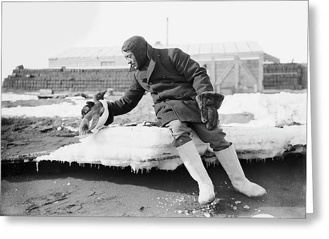 Penguin With An Antarctic Explorer Greeting Card by Scott Polar Research Institute