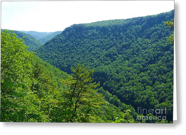 Pennsylvania Grand Canyon 1 Greeting Card