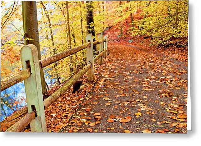 Pennypack Trail Philadelphia Fall Greeting Card