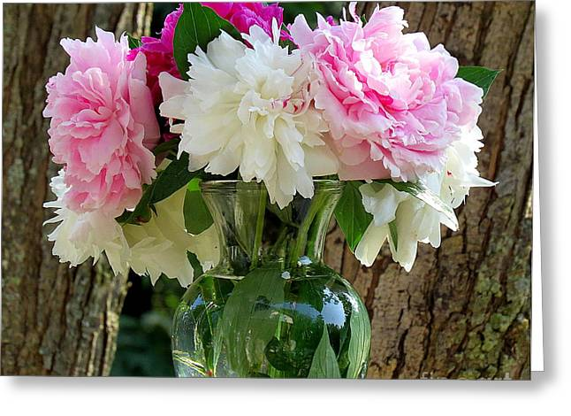 Peonies Greeting Card by France Laliberte