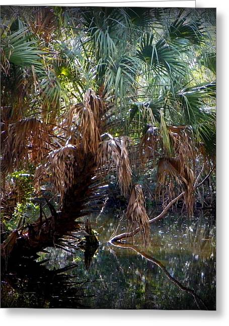 Pepper Creek Palm Greeting Card by Sheri McLeroy