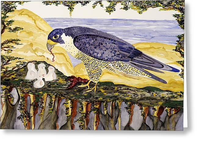 Peregrine Falcon Feeding Chicks Greeting Card by Alexandra  Sanders