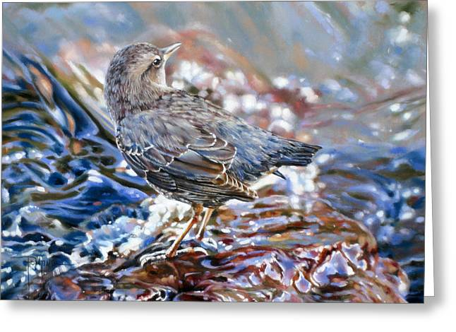 Perfect Camouflage  Greeting Card by Dianna Ponting