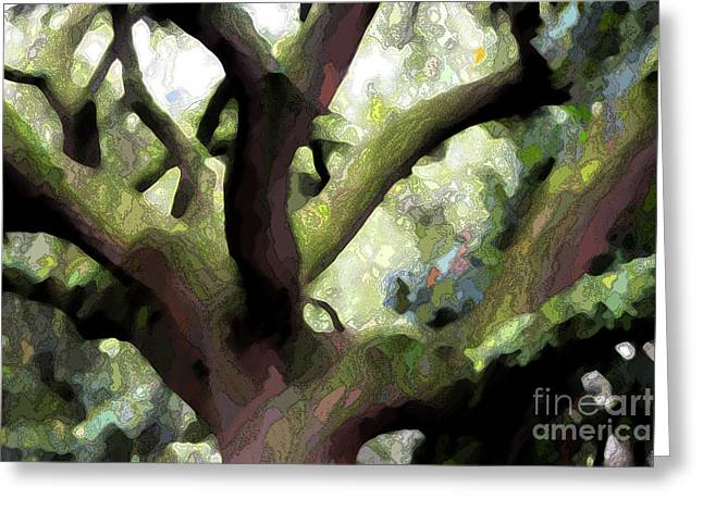 Perfect Climbing Tree  Greeting Card by Carol Groenen